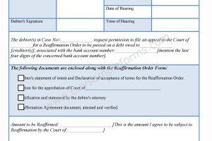 Bankruptcy Reaffirmation Form