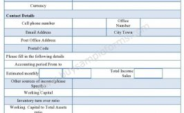 Sample Accounting Form