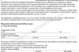 Scholarship Application Format