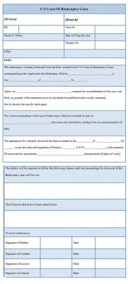 Bankruptcy Voluntary Dismissal Form