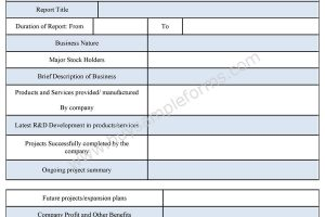 Business Report Form