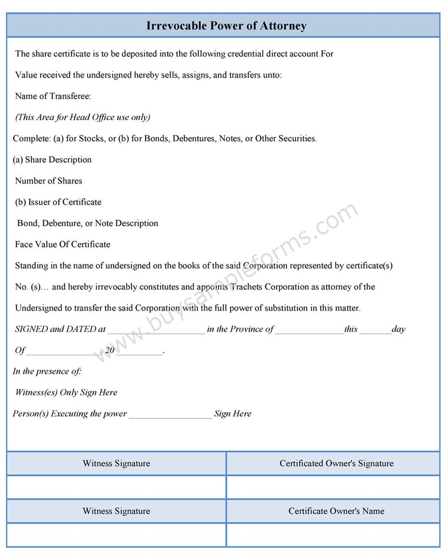 Download Easy To Edit Irrevocable Power Of Attorney Form At Only 300