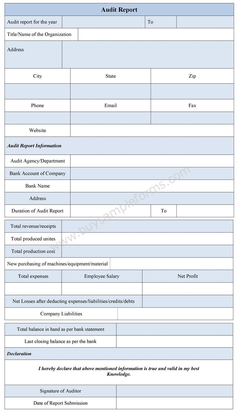 Audit Report Form Sample  Audit Report Formats