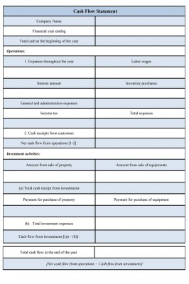 Cash Flow Statement Format