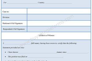 Witness Affidavit Form