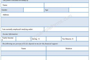 Financial Support Form