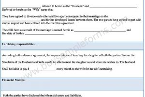 Download Divorce Agreement Form Template | Sample Divorce Settlement Agreement