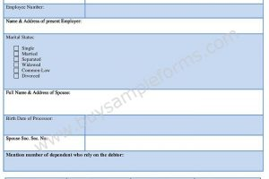 Bankruptcy Application Form Word Format – Bankruptcy Template