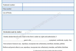 Intellectual Property Protection Form