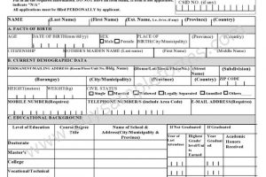 Civil Service Application Form