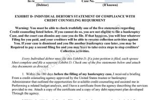 Free Bankruptcy Form