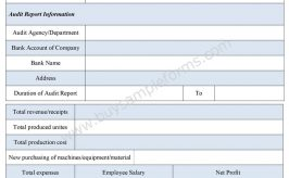 Audit Report Form