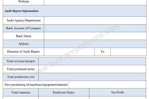 Audit Report Form