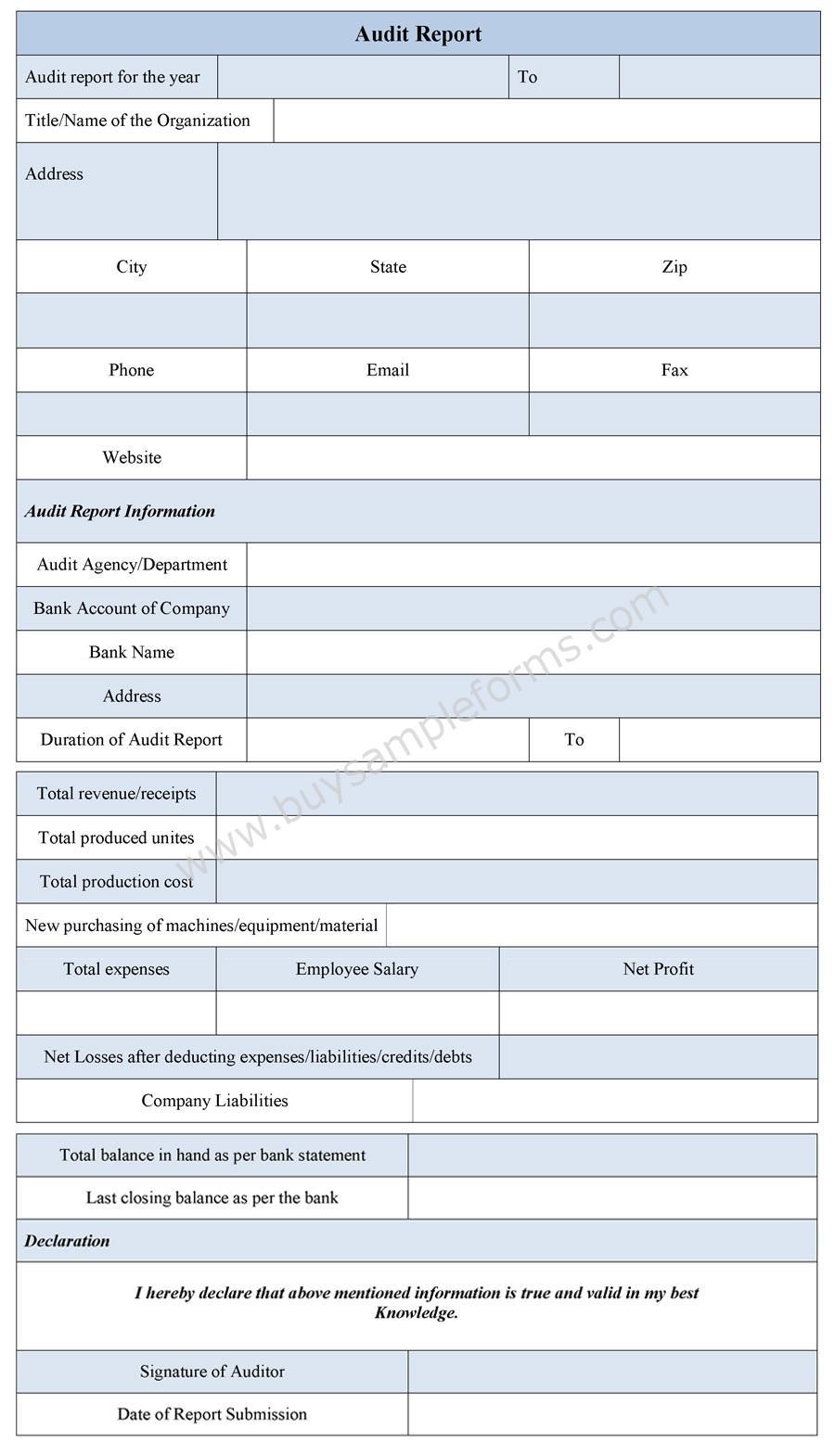 Audit Report Form sample