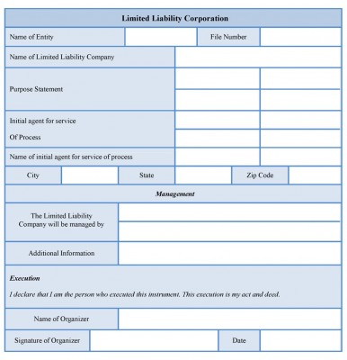 Limited Liability Corporation Form