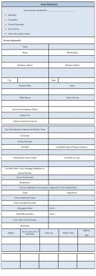 Assets Statement Form Format