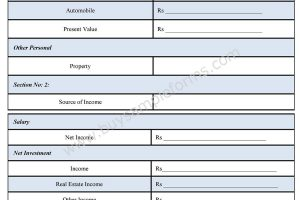 Financial Statement Form