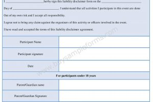 Download Liability Disclaimer Form Template in Word Document