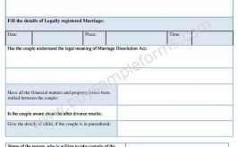 Sample Divorce Decree Form in Word Document