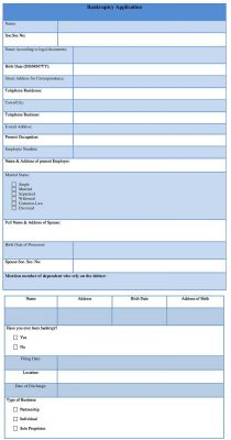 Bankruptcy Application Form Word Format - Bankruptcy Form Template
