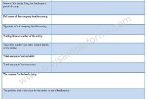 Bankruptcy Proof of Claim Form Example