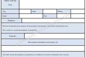 Eviction Notice Form | Eviction Notice Template in Word Doc