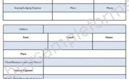 Printable Monthly Expenses Report Form | Expenses Format in Word