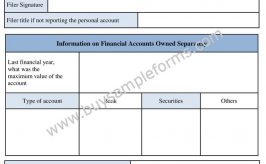 Printable Foreign Bank Account Form Template | Sample Fbar Form