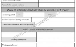 Printable Online Accounting Form and Accounting Template