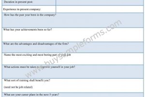 Management Performance Appraisal Form Template, Sample Doc