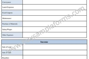 Printable Basic Accounting Form Template for Small Business