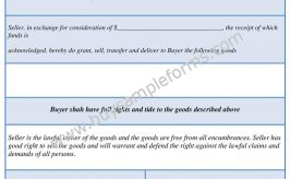 Printable Generic Bill of Sale Form Template Word